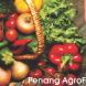 PG AgroFest